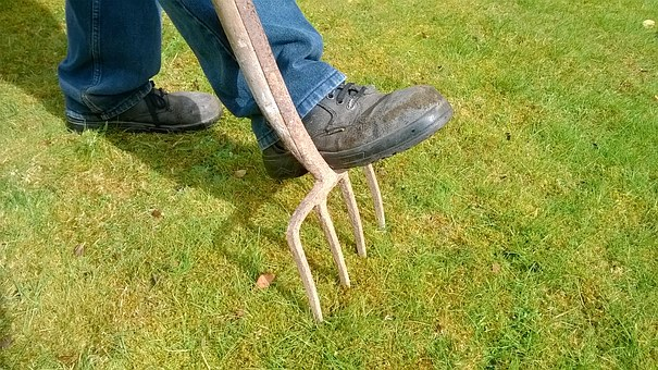 Aerate Your Lawn With No Machines