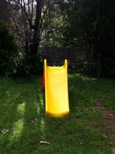 shaded-yard
