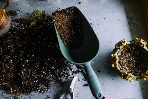 rich-soil