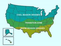 seasonal-grass-us-map