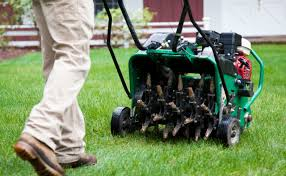 lawn-recovery-procedure