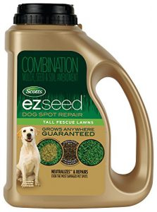 easy-seed-dog-urine