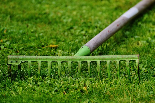 spring-raking