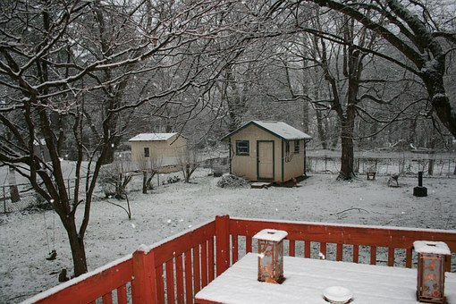winter-backyard