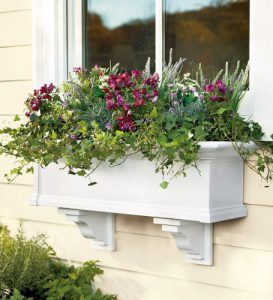 Window Flower Box