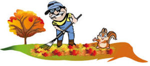 What To Do For Fall Cleanup