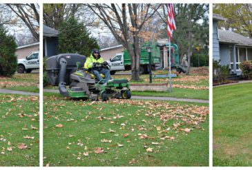 Lawn Cleanup Services