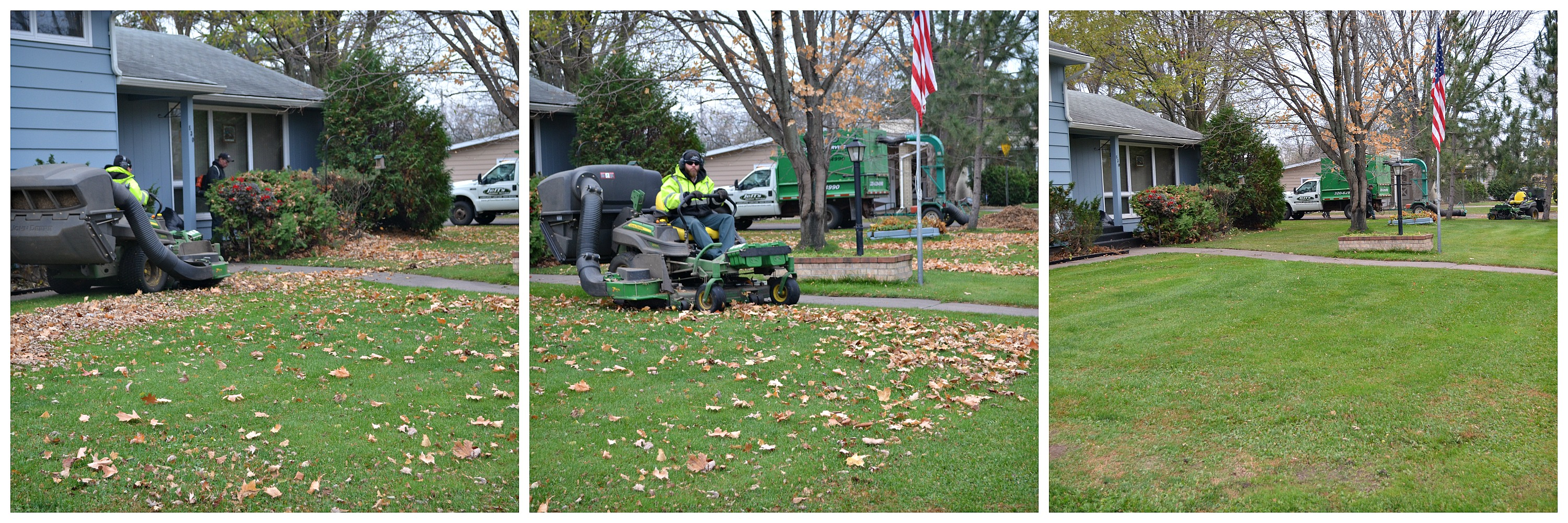 Lawn Cleanup