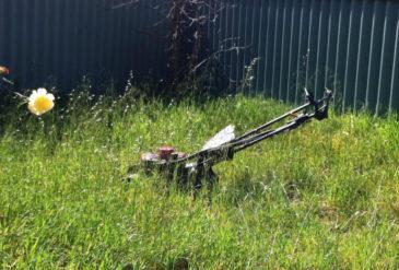Overgrown Lawn Help